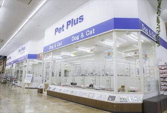 ペットプラススーパービバホーム名古屋店