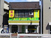 ペットショップ サトウ 鹿浜店