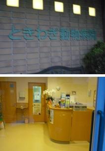 ときわぎ動物病院