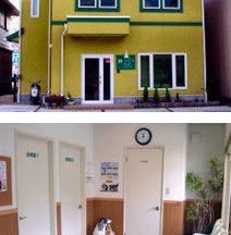 メープル動物病院