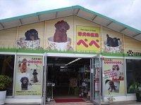 仔犬の広場 ペペ