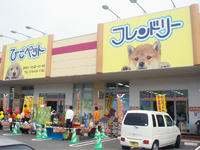 ひごペットフレンドリー ロックタウン加古川店