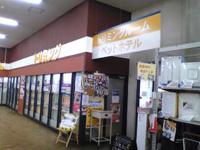 アヤハディオ 吉祥院八条店