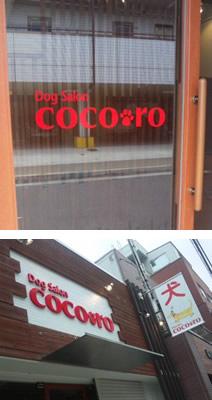 DogSaloncocoro(ココロ)