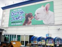 ひごペットフレンドリー 岸和田店