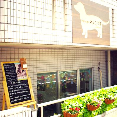 DOG SALON わんころ家(ワンコロヤ)