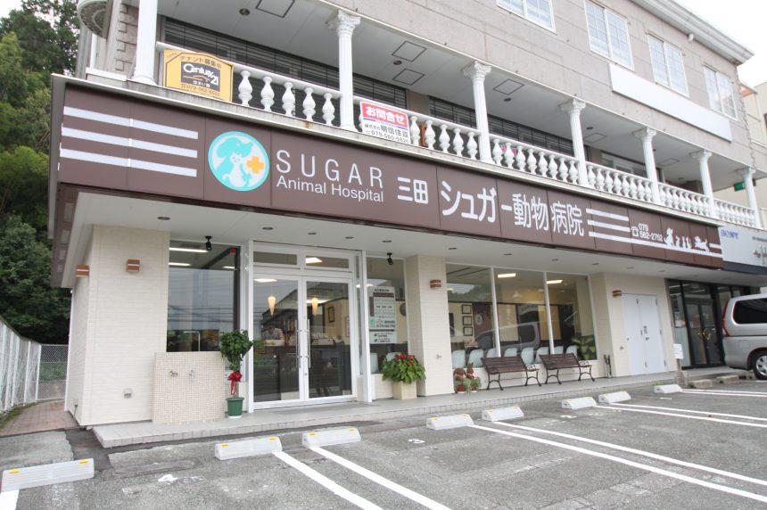 三田シュガー動物病院