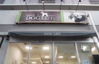 DOGLIFE川口店