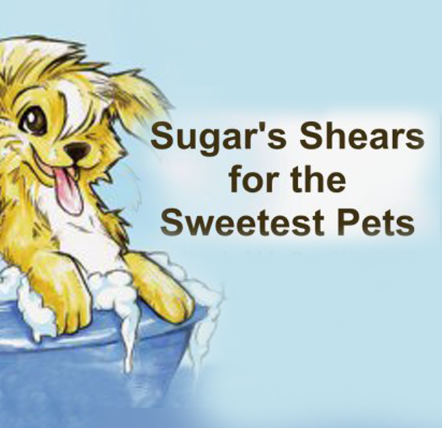 Sugar's Shears for the Sweetest Pets