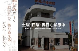 高橋犬猫病院